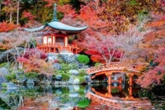 Япония.токио 1