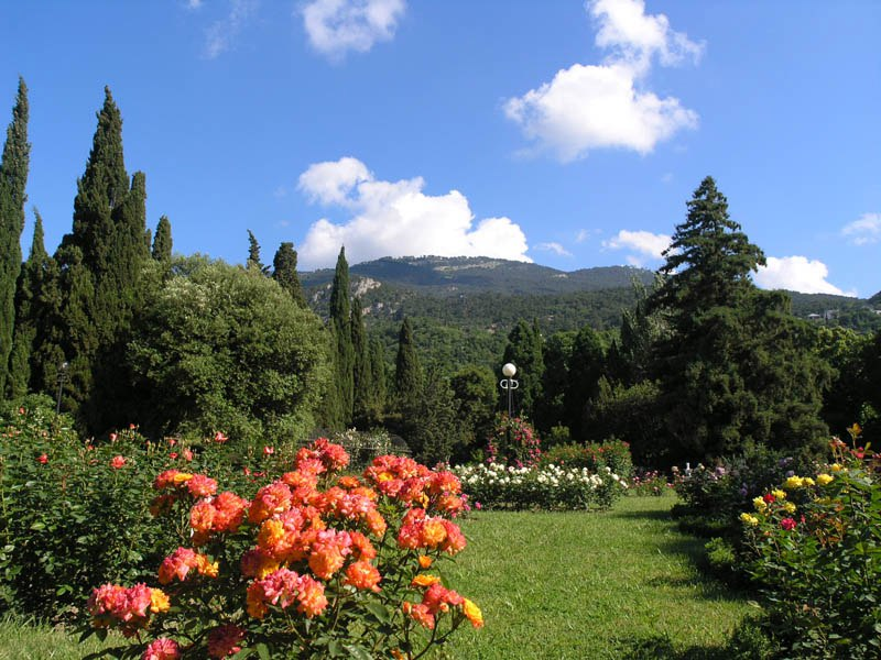 Крым. Поход (часть 2). Никитский ботанический сад