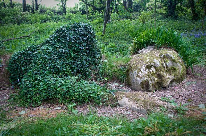Сад спящего гиганта.